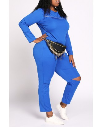 Lovely Casual Broken Holes Blue Plus Size Two-piece Pants Set